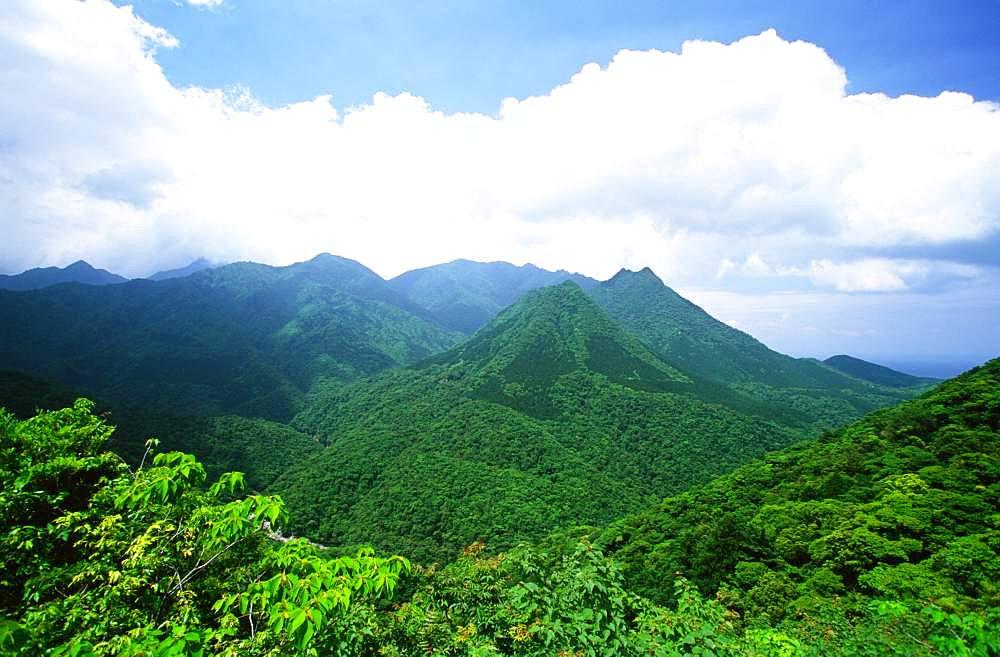 Yakushima Miyanoura Peak, Yakushima, Kagoshima Prefecture