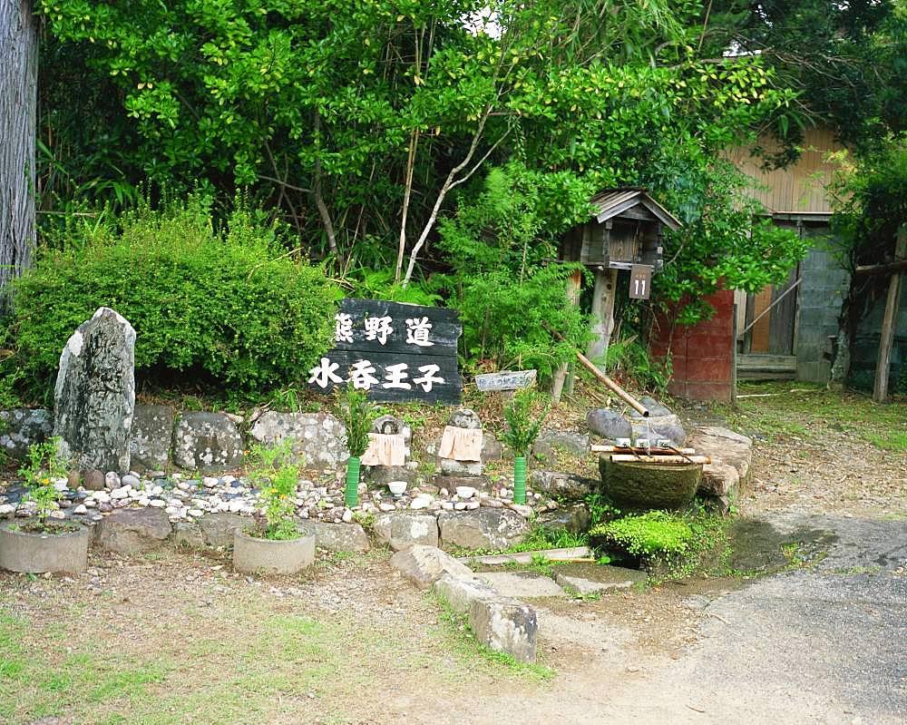 Mizunomi Ohji, Kumanokodo, Wakayama, Japan