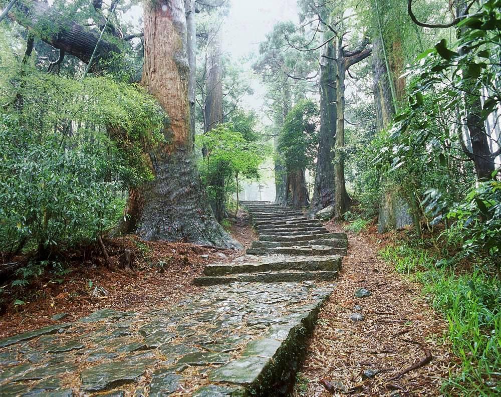 Daimonzaka, Kumanokodo, Wakayama, Japan