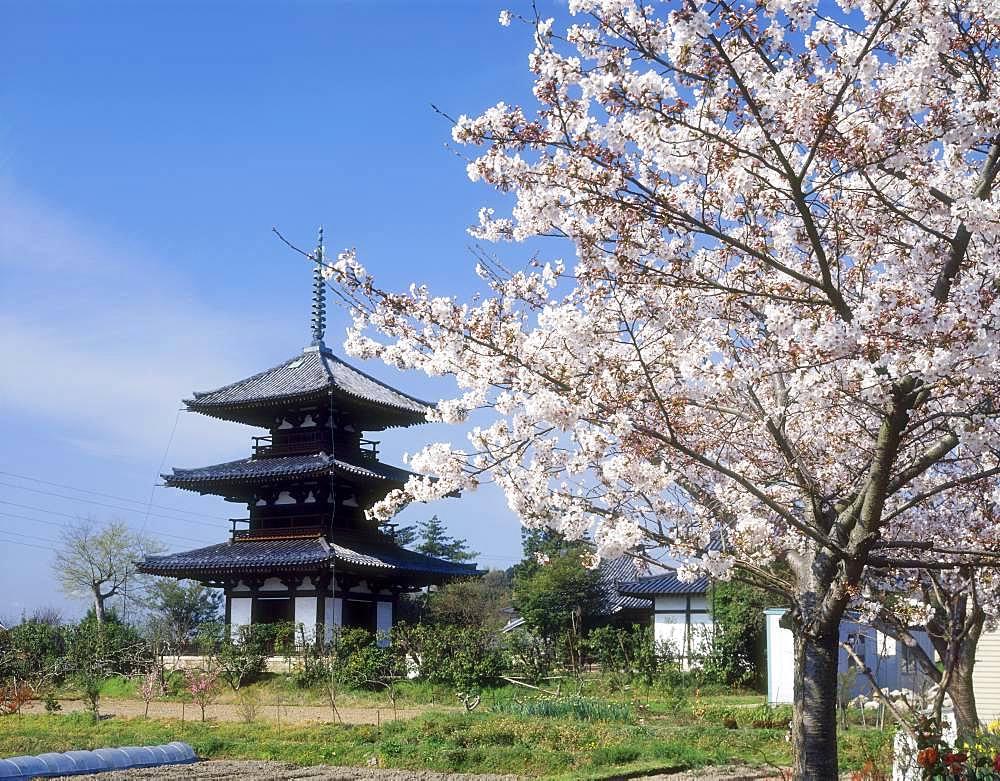 Hokki-ji, Nara, Japan