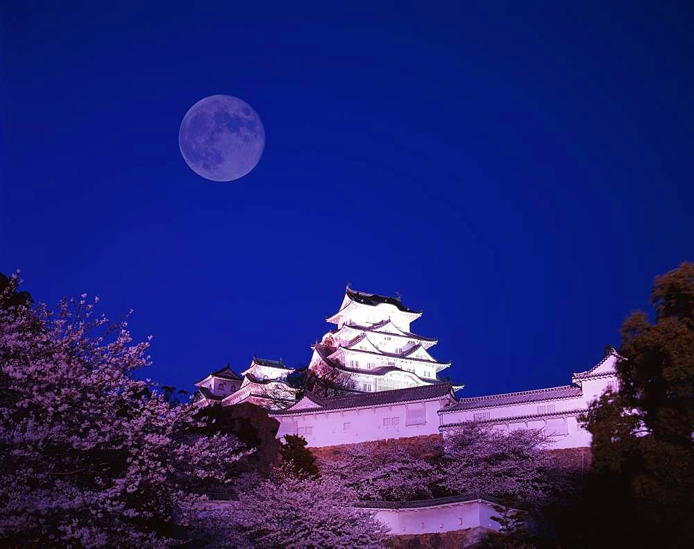 Himeji Castle and Moon, Hyogo, Japan