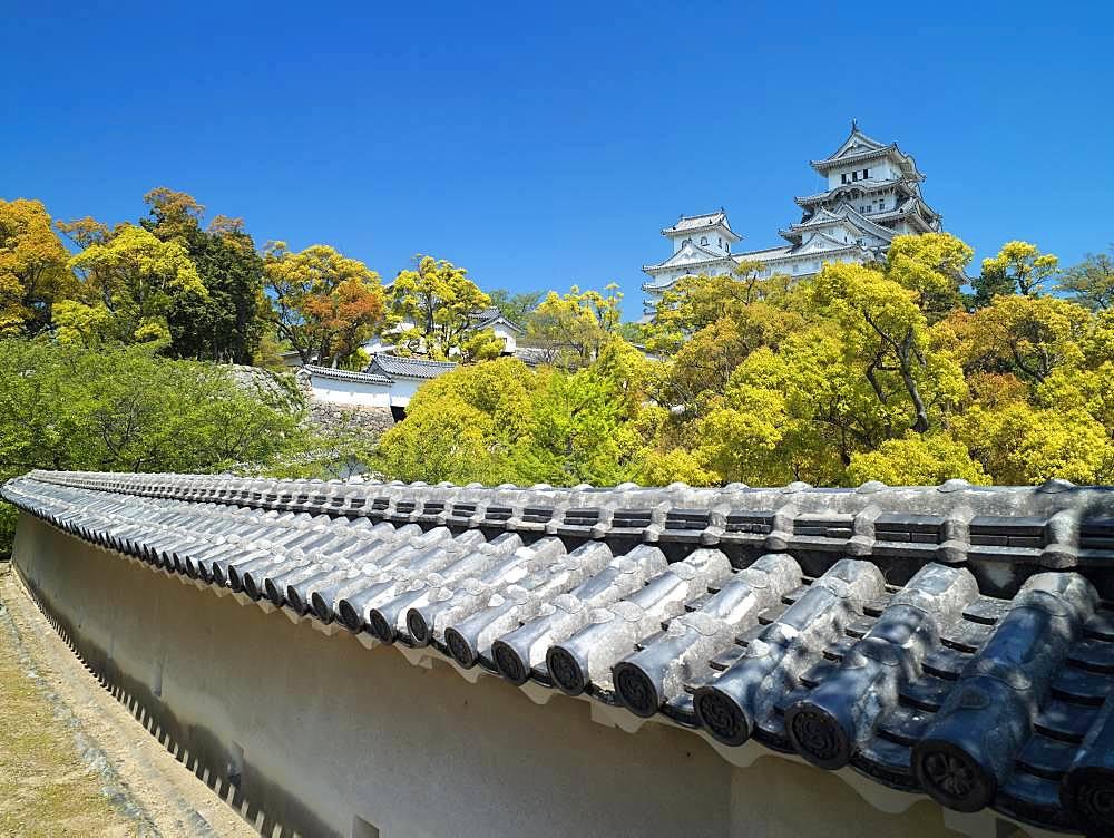 Himeji Castle, Hyogo, Japan - 1172-4972