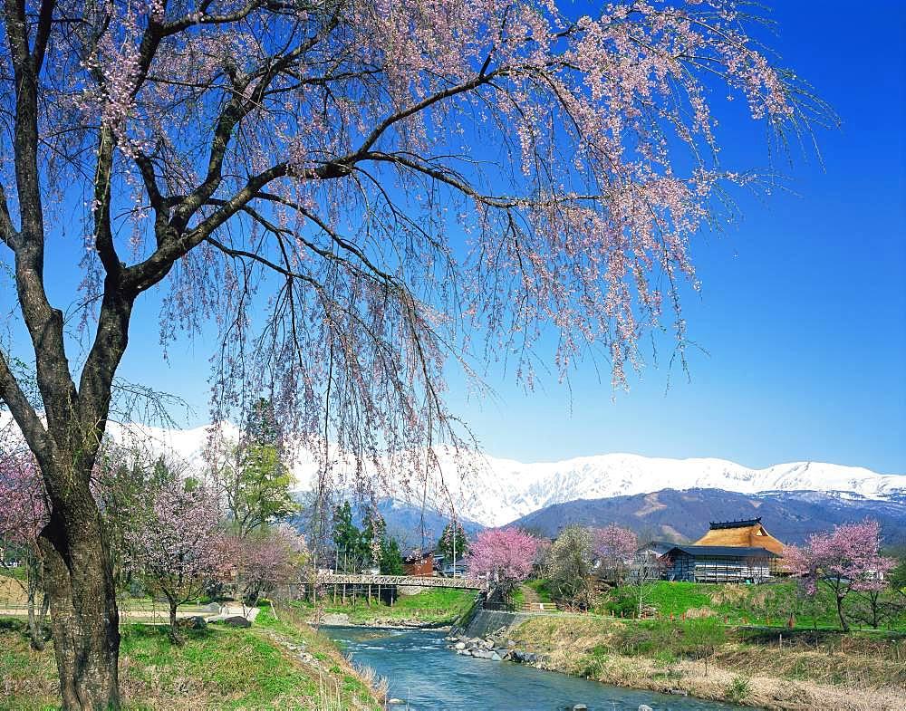 Hakuba Village, Nagano Prefecture