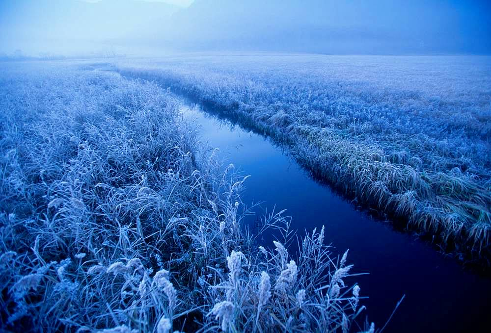 Morning, Large Frost, Gunma Prefecture