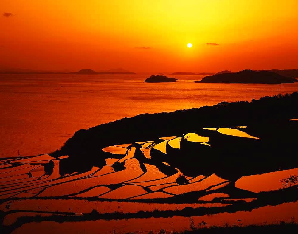Terraced Rice Field, Tsuchida, Nagasaki Prefecture