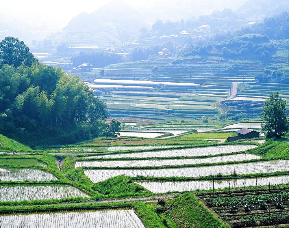 Kannabinosato, Nara Prefecture