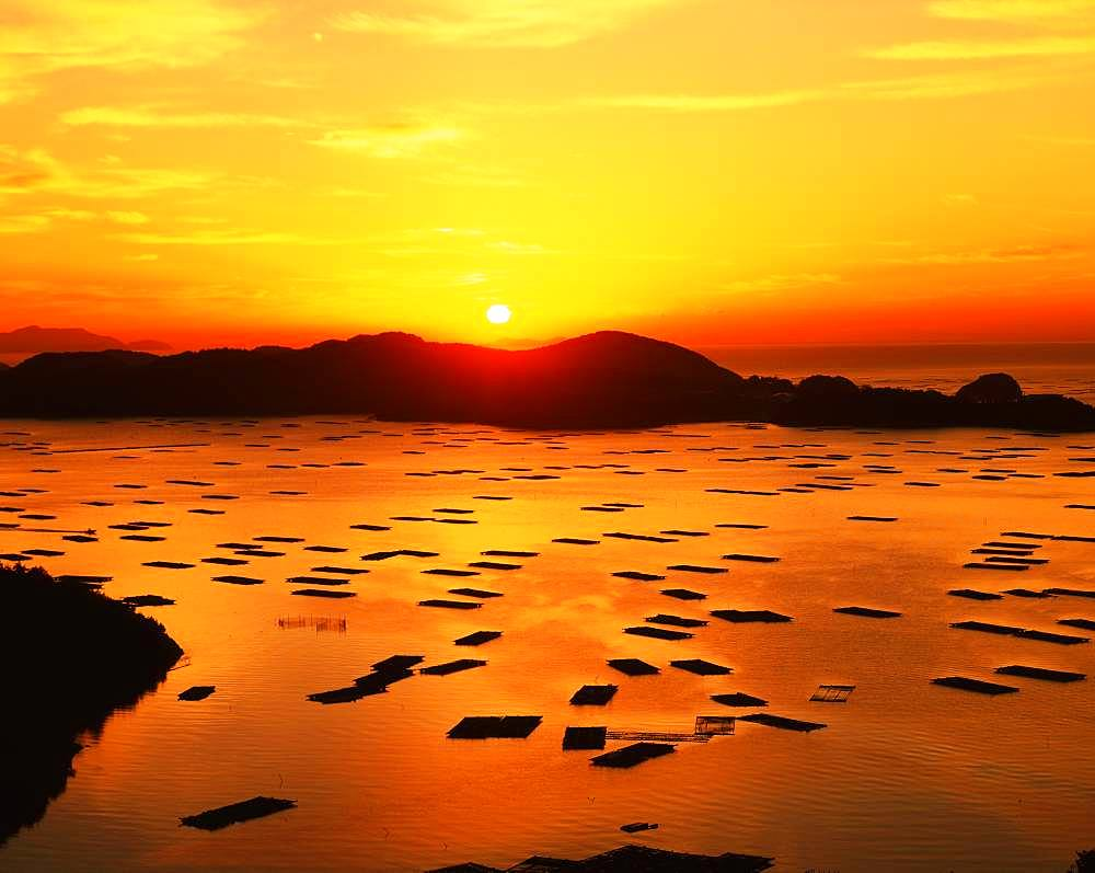 Morning Sun, Okayama Prefecture - 1172-5201