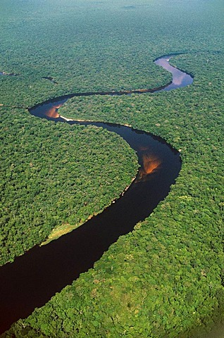 River in lowland rainforest. An Aerial view over the landscape Congo, DRC, Democratic Republic of the Congo
