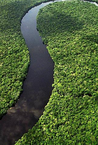 River winding through rainforest, Congo, DRC, Democratic Republic of the Congo