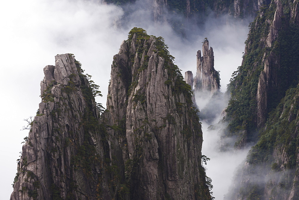 Huang Shan, which means Yellow Mountain. Anhui Provice in China. Jagged rock towers, Huang Shan, China
