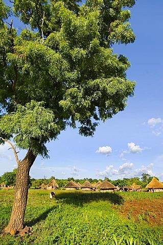 Fongoli village, Senegal