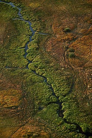 Vegetation patterns, aerial view, Okavango Delta, Botswana
