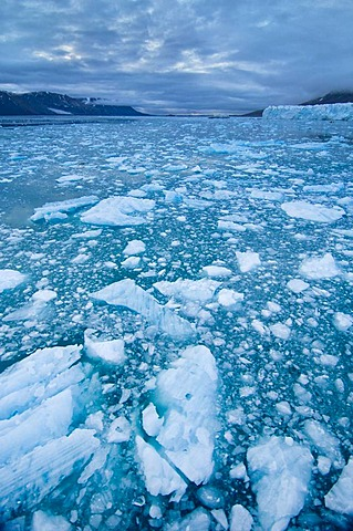 Ice floes around Monaco Glacier, Svalbard, Norway