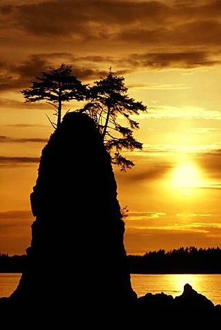 Sea stack at sunset, Vancouver Island, British Columbia, Canada