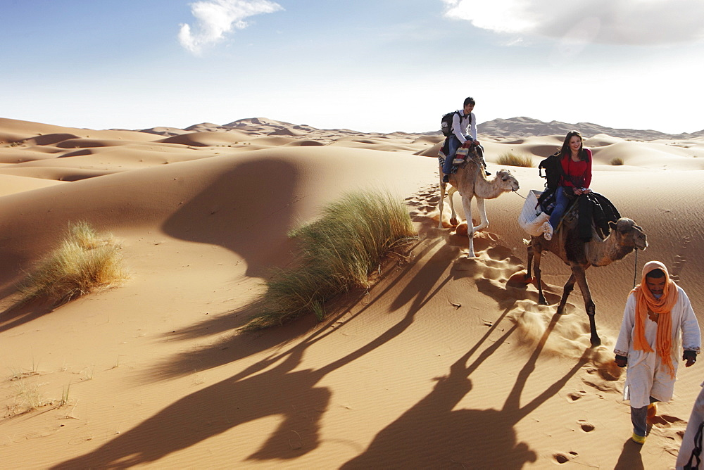 A guided dromedary tour through the sand dune desert Erg Chebbi, Morocco