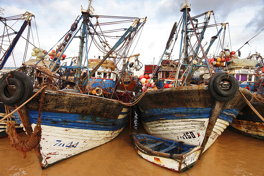 Fishing boats in the morning in the busy fishing harbour of the former Portuguese colony, Essaouira, Morocco