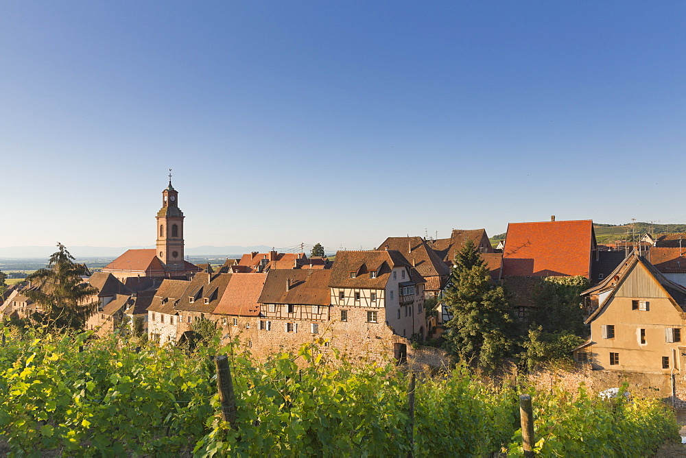 Riquewihr in the morning, Alsace