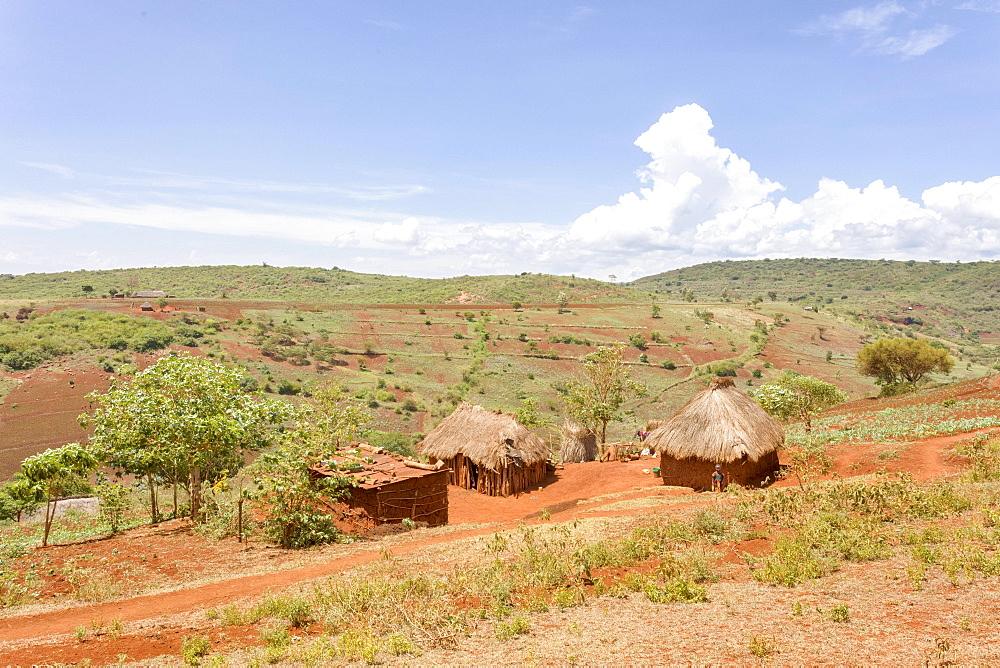 Native huts on the Serengeti, Tanzania, Africa