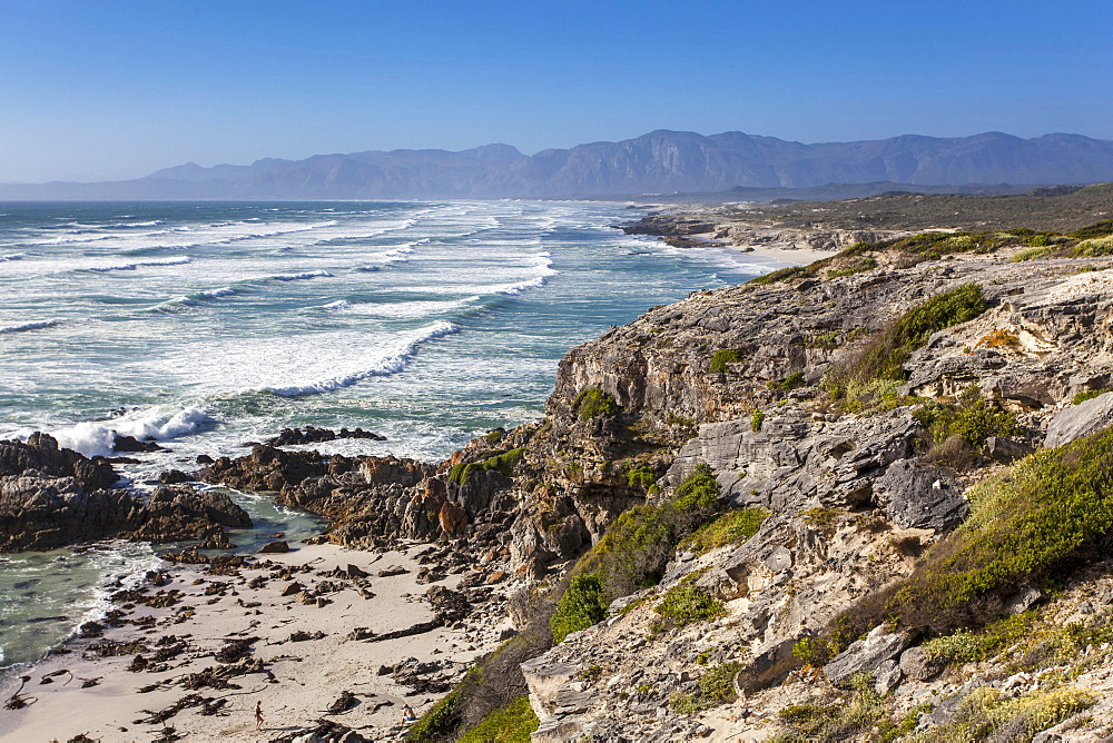 Walker Bay in the Grootbos Nature Reserve (South Africa) - 1175-1396