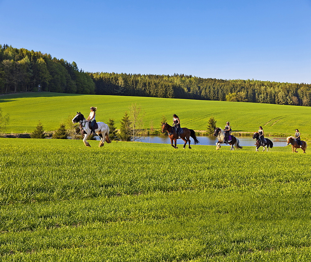 Women riding horse in western woods, Swabia, Augsburg, Bavaria, Germany