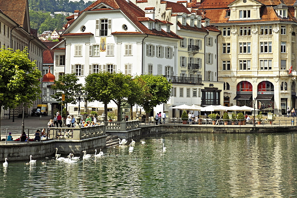 View of tourits on promenade and swans in Reuss river in Lucerne, Switzerland