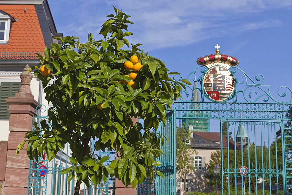 Coat of arms on top of gate in Castle Park, Bad Homburg, Germany