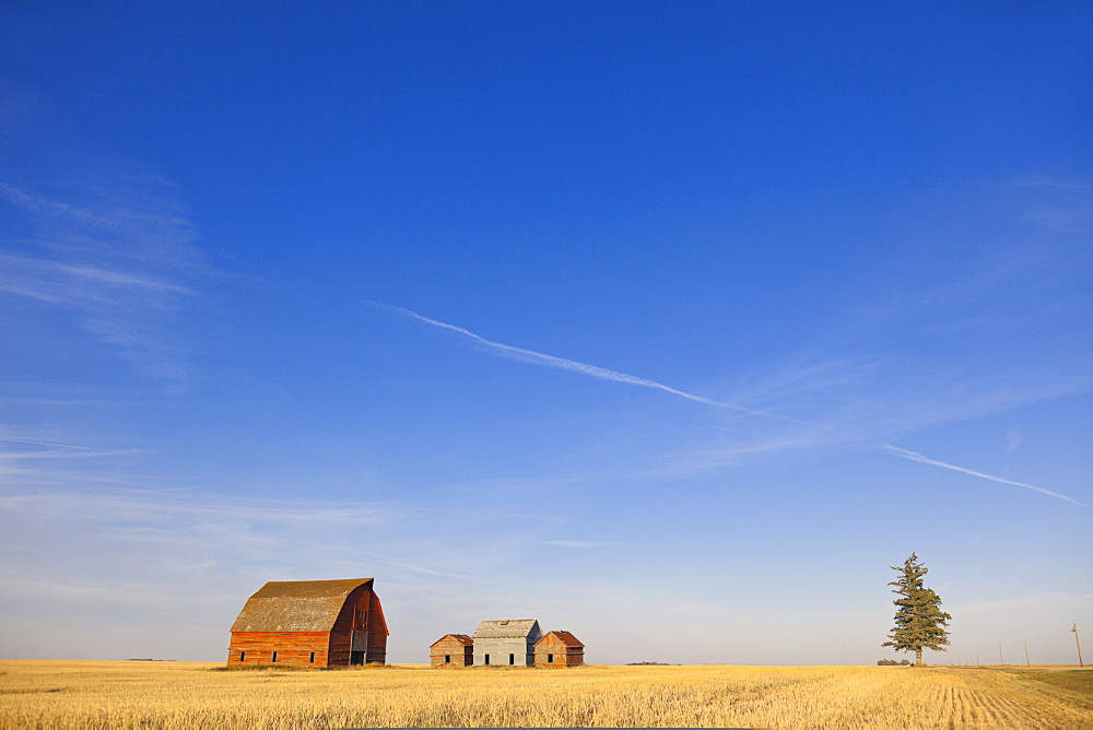 View of farmer's house, Saskatchewan, Canada