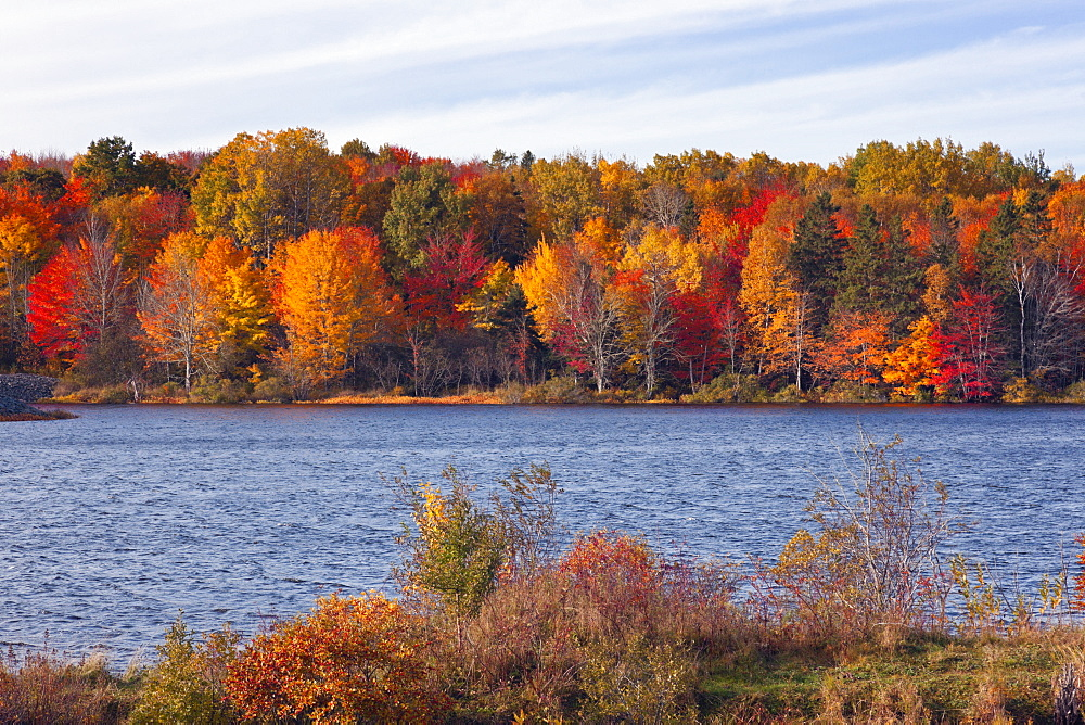 View of colourful trees at bank of river, Nova Scotia, Canada