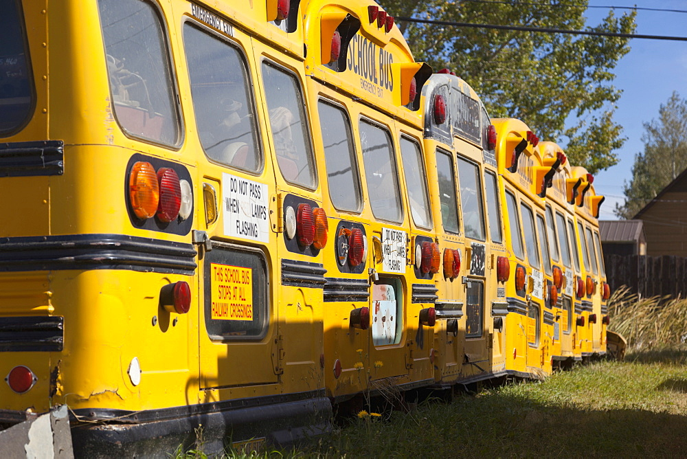 View of parked school buses, Saskatchewan, Canada