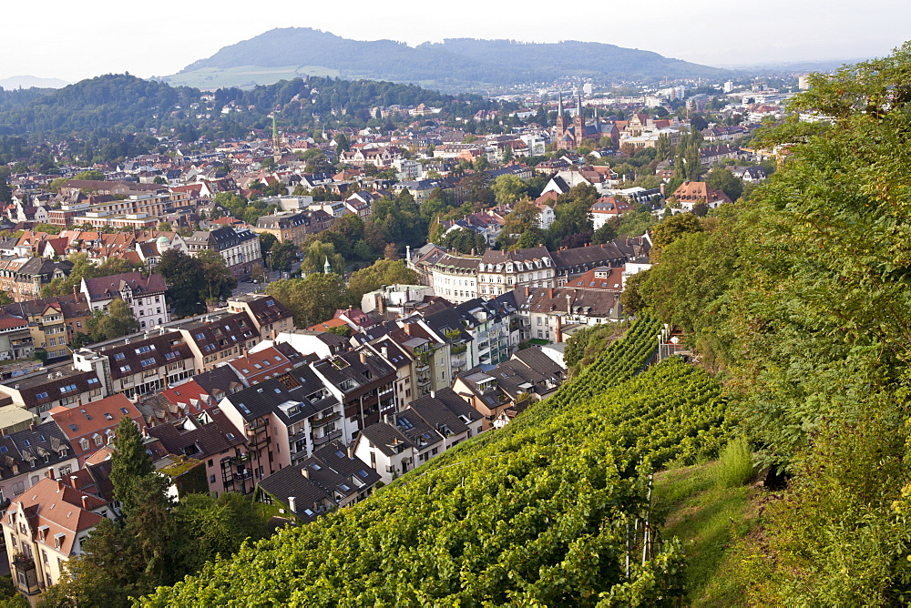 View of cityscape from Schlossberg, Freiburg, Germany