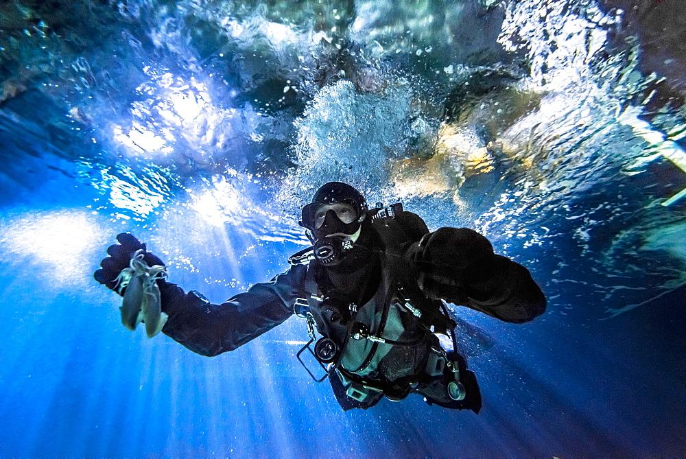 A diver in a tunnel aquarium, Ozeaneum, Stralsund