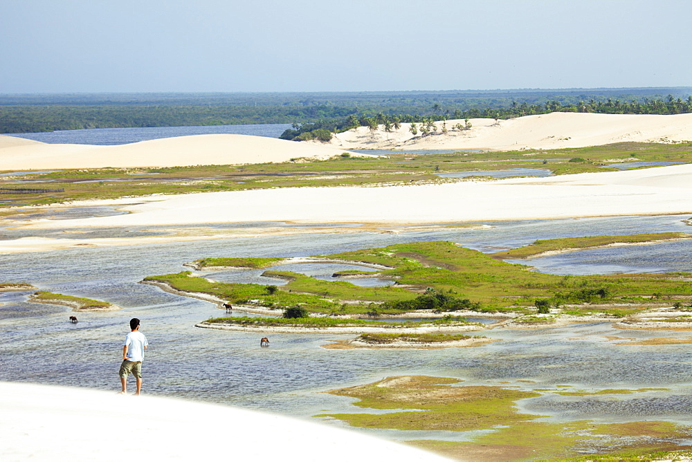 A man looking out from the Funil dune, Ceara, Brazil, South America