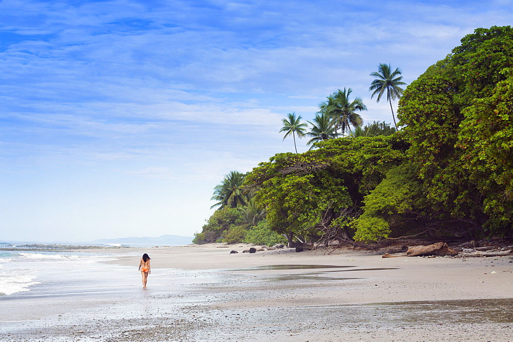 A young woman walking along Manzanillo beach in Santa Teresa, Nicoya peninsula, Puntarenas, Costa Rica, Central America