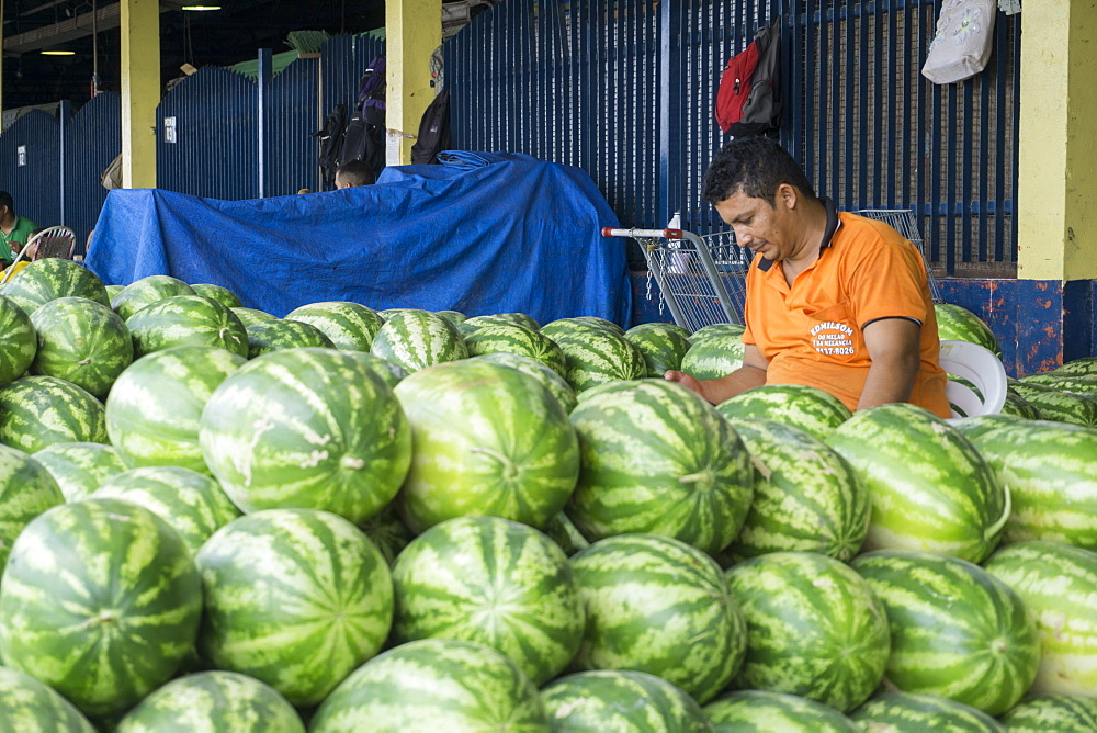 Watermelon seller, Manaus, Amazonas, Brazil, South America