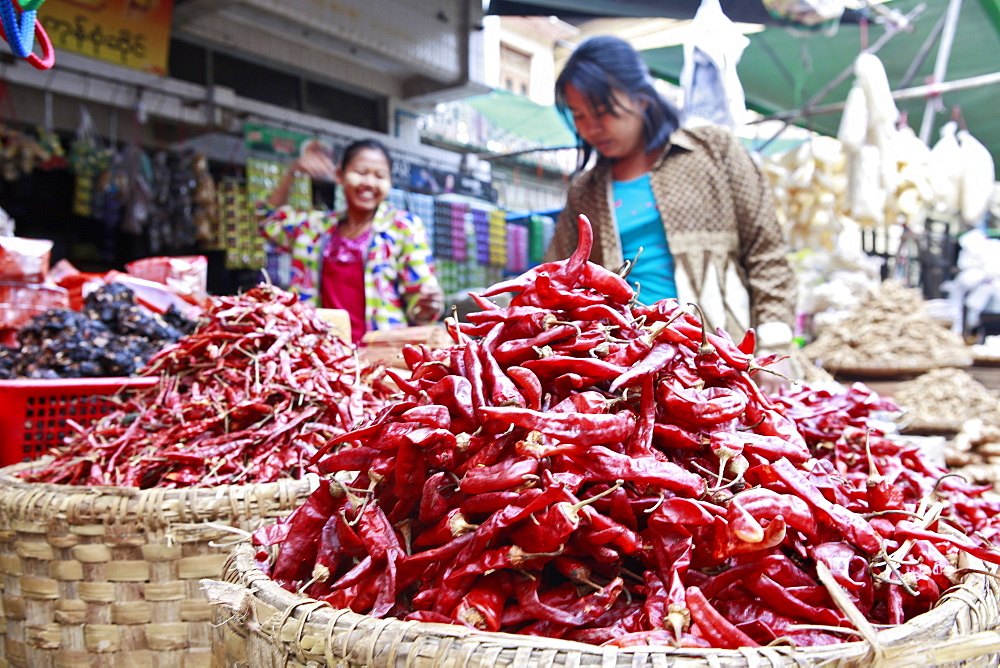 Chilli peppers at Monywa market, Monywa, Sagaing, Myanmar, Southeast Asia - 1176-326