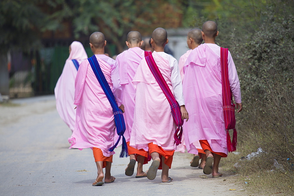Buddhist nuns in traditional robes, Sagaing, Myanmar (Burma), Southeast Asia