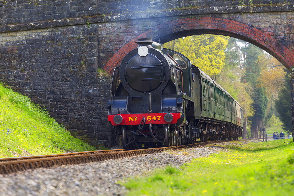 Bluebell Railway, West Sussex, England, United Kingdom, Europe