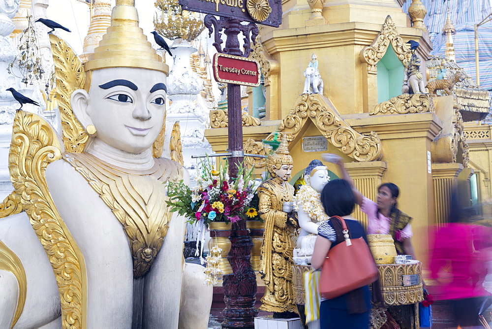 Devotees paying obeisance to the 'Tuesday' buddha at the Shwedagon pagoda complex in Yangon (Rangoon), Myanmar (Burma), Southeast Asia