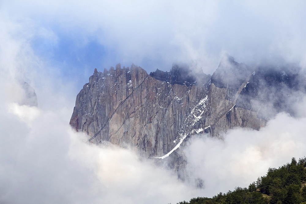 Forest and the rugged mountains in the Torres del Paine national park, Patagonia
