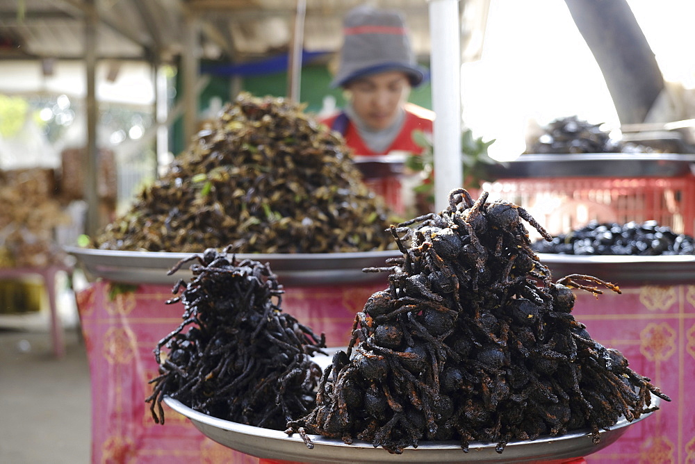 Tarantulas and other insects and bugs for sale as street food, Cambodia, Indochina, Southeast Asia, Asia