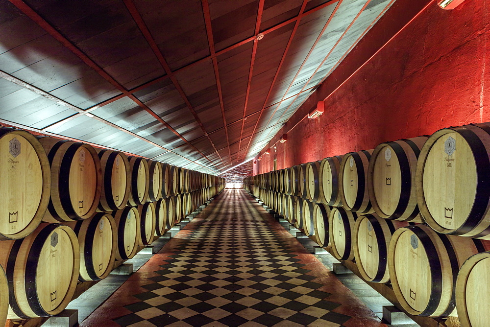Wine barrels in the cellars of the Reynolds winery and vineyard near Arronches, Alentejo, Portugal, Europe