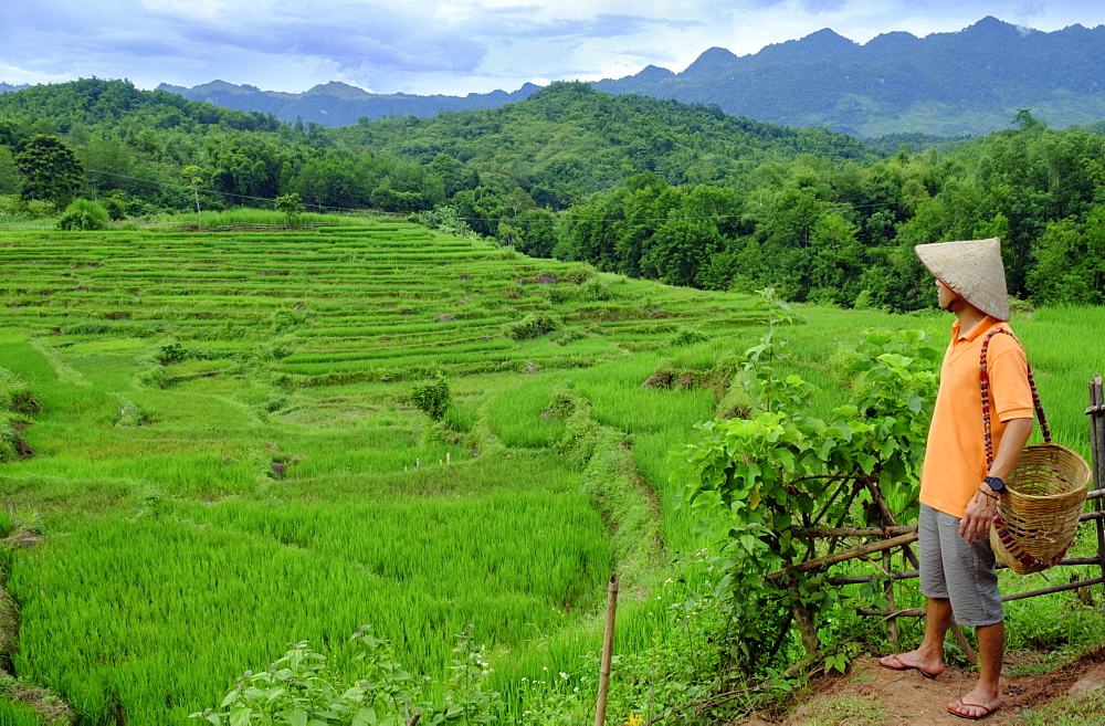Farmer wearing a conical hat looking out over rice paddy terraces, Mai Chau, Hoa Binh, Vietnam, Indochina, Southeast Asia, Asia