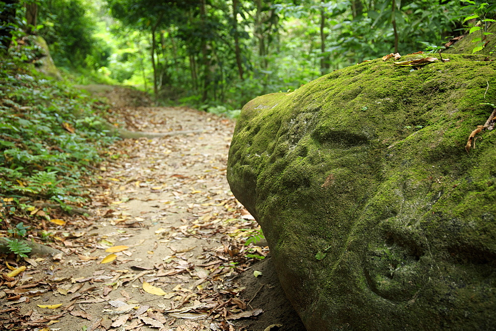 A carved petroglyph on a rock on the hiking trail to Pueblito in Tayrona National Park, Magdalena State, Colombia, South America