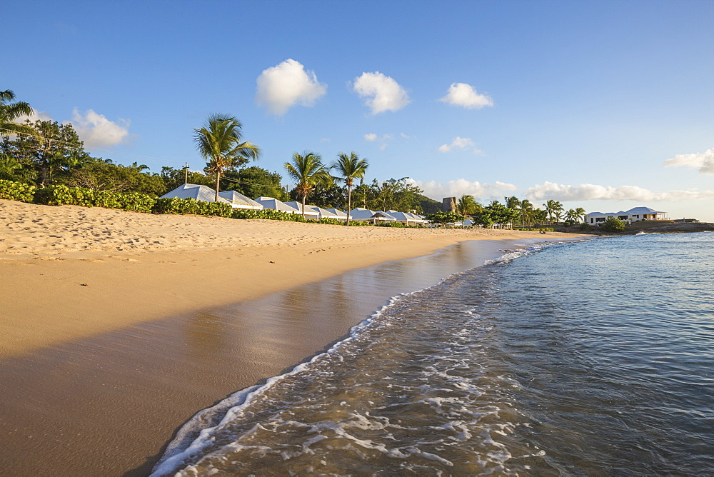 Blue sky and palm trees frame the beach and the Caribbean sea, Hawksbill Bay, Antigua, Antigua and Barbuda, Leeward Islands, West Indies, Caribbean, Central America