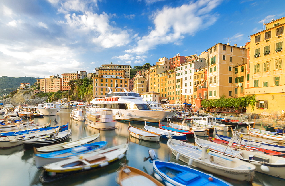 Blue sky on harbour of the fishing village Camogli Gulf of Paradise Portofino National Park Genoa province Liguria Italy Europe