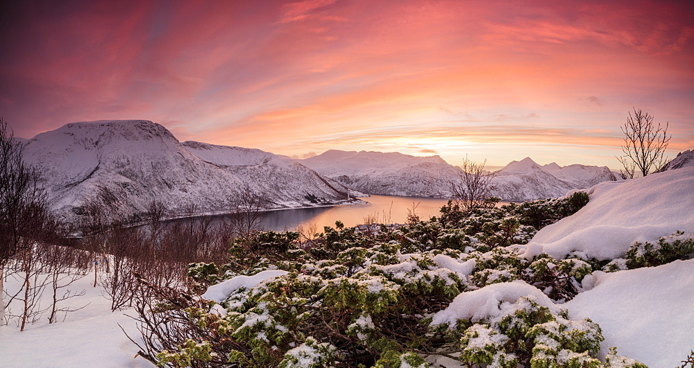Panorama of frozen sea surrounded by snow framed by the orange sky at sunset, Torsken, Senja, Troms County, Arctic, Norway, Scandinavia, Europe - 1179-1376