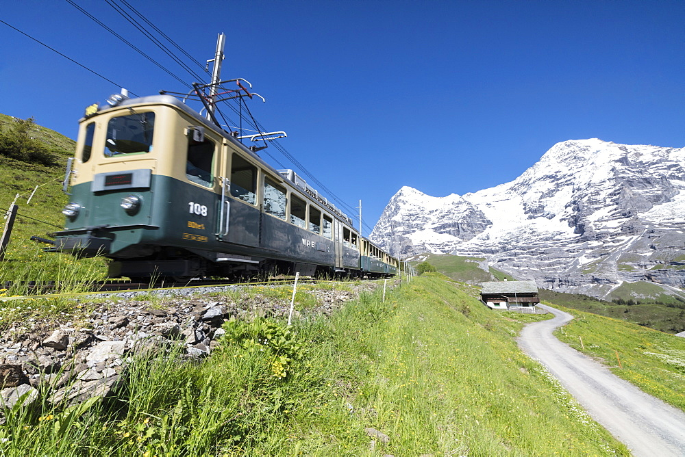 The Wengernalpbahn rack railway runs across meadows and snowy peaks, Wengen, Bernese Oberland, Canton of Bern, Switzerland, Europe