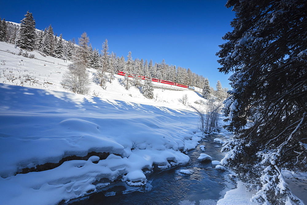 Rhaetian Railway on the Chapella Viadukt surrounded by snowy woods, Canton of Graubunde, Engadine, Swiss Alps, Switzerland, Europe