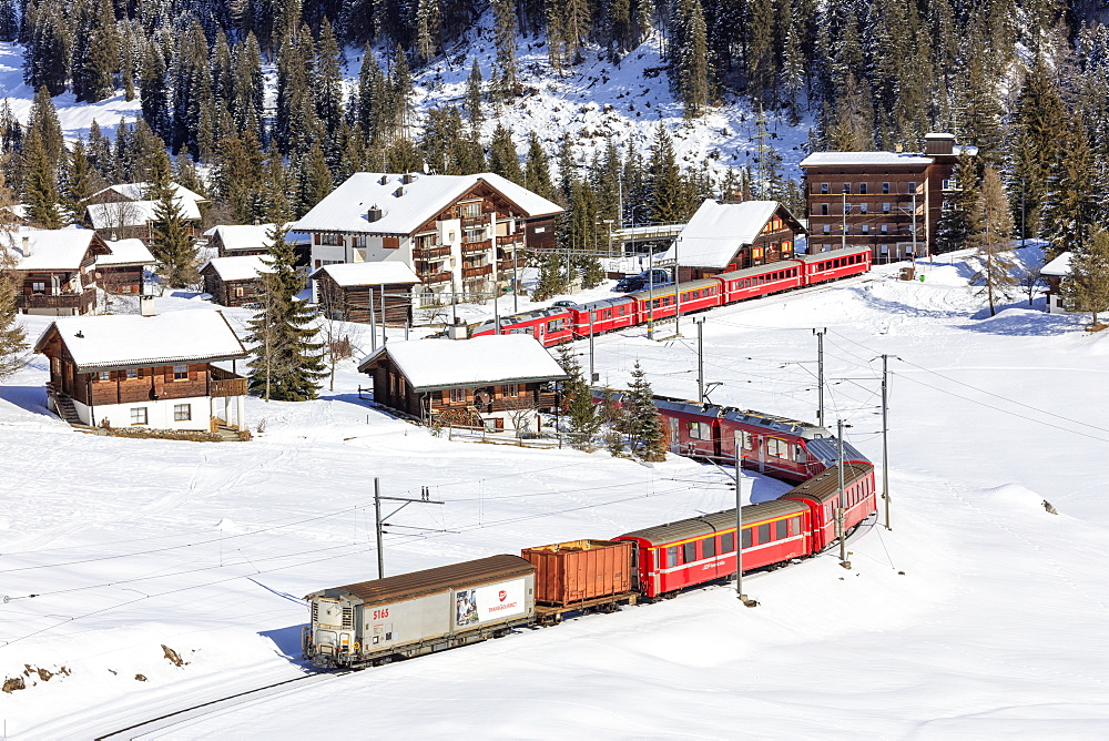 Red train of Rhaetian Railway passes in the snowy landscape of Arosa, district of Plessur, Canton of Graubunden, Switzerland, Europe