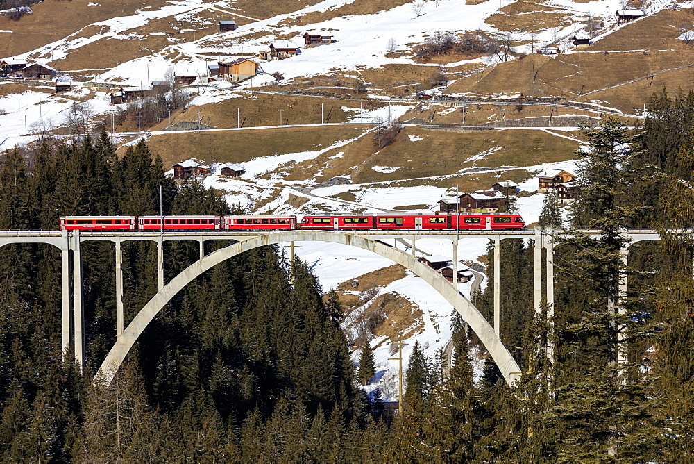 Red train of Rhaetian Railway on Langwieser Viaduct surrounded by woods, Canton of Graubunden, Switzerland, Europe